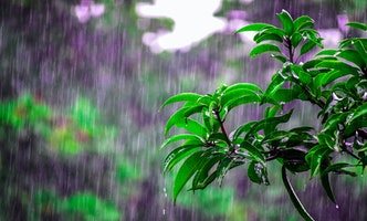 Planning Your Rainy Day Fund