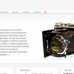 Biz WordPress Theme