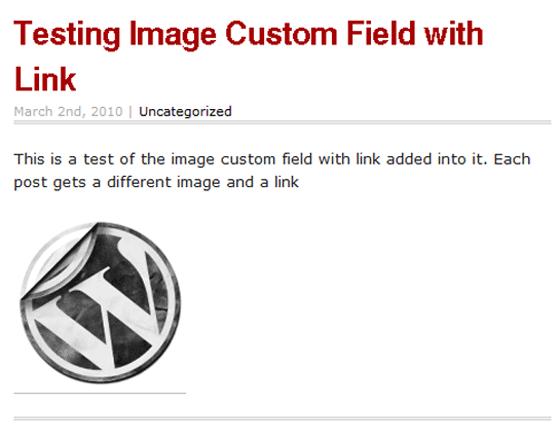 Custom Fields in Action