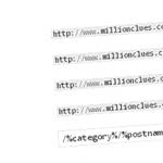 Custom Permalinks In WordPress