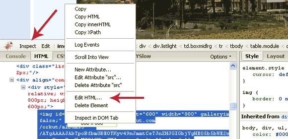 Disable Java With The Firebug Firefox Plugin