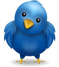 Twitter Quick Start Guide, Twitter Birdie Goes here